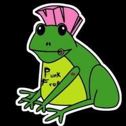 Punkfrog Photography